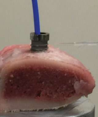 Figure 10: NanoTite™ implant embedded in a block of pork rib bone and irradiated by diode laser
