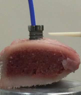 Figure 9: NanoTite™ implant embedded in a block of pork rib bone and irradiated by CO2 laser